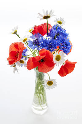 Arrange Photograph - Wildflower Bouquet by Elena Elisseeva