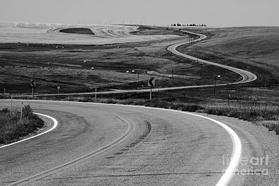 Winding Road Art Print by Sue Smith