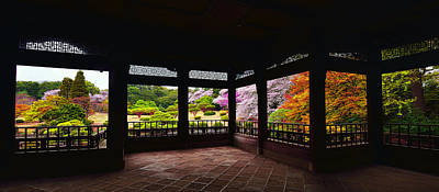 Cherry Blossoms Photograph - Window To Spring by Midori Chan