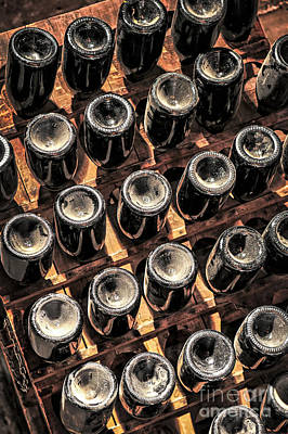 Photograph - Wine Bottles by Elena Elisseeva