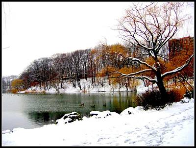 Winter By The Lake Original
