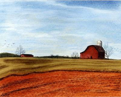 Winter Fields Art Print