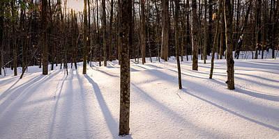 Photograph - Winter Shadows by Jeff Sinon