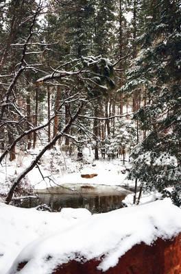 Photograph - Winter Solitude  by Saija  Lehtonen