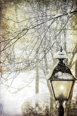 Winter Stillness Art Print by Julie Palencia