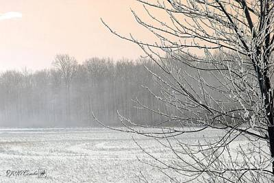 Photograph - Winter Woods by J McCombie