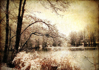 Winter Landscapes Photograph - Winter's Arrival  by Jessica Jenney