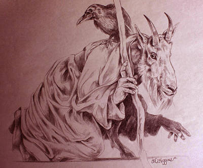 Mountain Goat Drawing - Wise Old Goat by Derrick Higgins