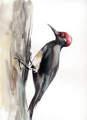 Woodpecker Painting - Woodpecker by Sophia Rodionov
