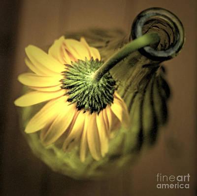 Yellow Art Print by Amanda Barcon