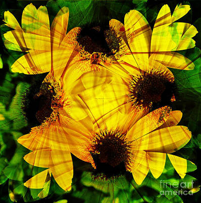 Digital Art - Yellow Daisy Abstract by D Hackett
