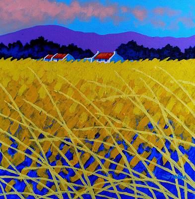 Yellow Meadow Art Print by John  Nolan