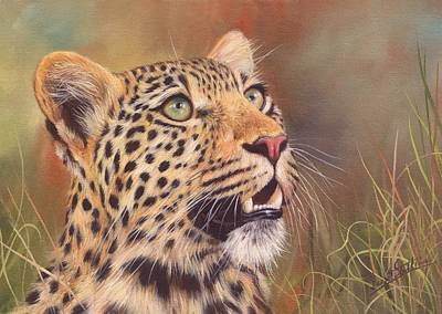 Feline Painting - Young Leopard by David Stribbling