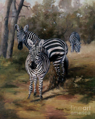 Painting - Zebras by Brenda Thour