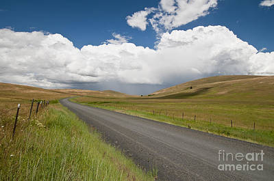 Photograph - Zumwalt Prairie In Oregon by William H Mullins