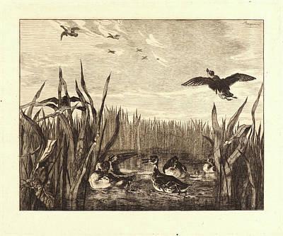 Félix Bracquemond French Art Print by Litz Collection