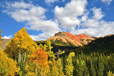 Photograph - Red Mountain Pass Fall Colors by Ray Mathis