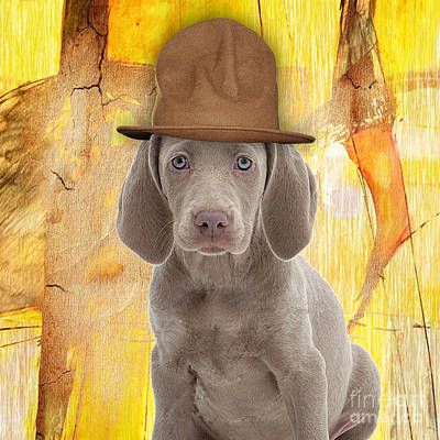 Portrait Art Mixed Media - Weimaraner Collection by Marvin Blaine