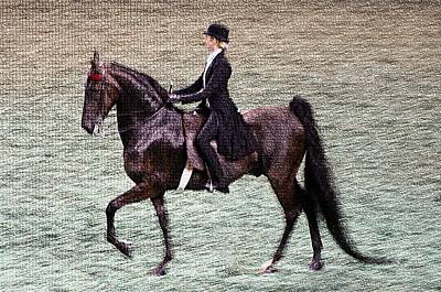2008-i World Championship Horse Show - Louisville Ky Art Print by Thia Stover