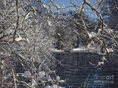 Photograph - 2010 Blizzard by Ronald Lutz