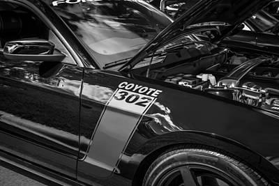 Photograph - 2013 Ford Shelby Boss 302 Coyote Mustang Paitned Bw by Rich Franco