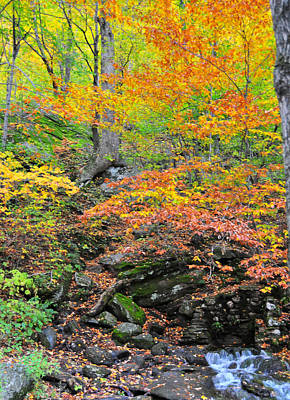 Photograph - 2013 Prize Winner --colorful Bounty At Smuggler's Notch Vermont  by Brian Hoover