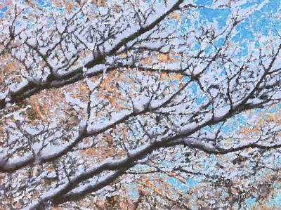 Grist Mill Mixed Media - 2013 Snow On Branches by Philip White