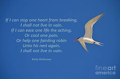 203- Emily Dickinson Art Print
