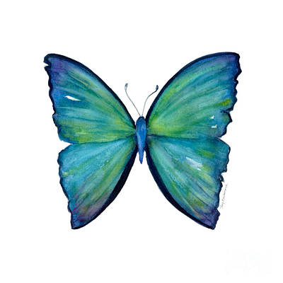 Animals Paintings - 21 Blue Aega Butterfly by Amy Kirkpatrick