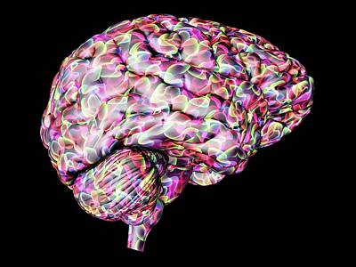 Abstract Human Body Photograph - Human Brain by Alfred Pasieka