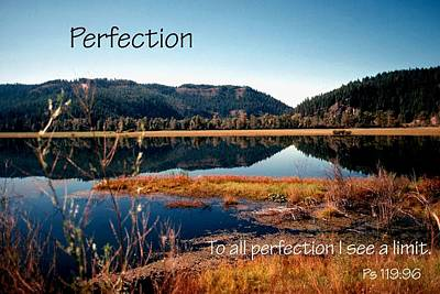 Photograph - 21042 Perfection 2 by Jerry Sodorff