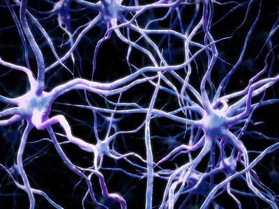 Neural Network Art Print