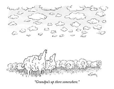 Sheep Drawing - Grandpa's Up There Somewhere by Mike Twohy