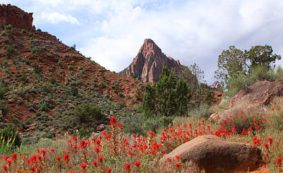 Photograph - Spring At The Watchman by Susan Rovira