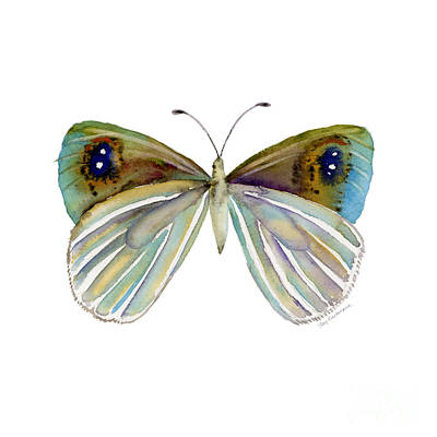 Painting - 23 Blue Argyrophenga Butterfly by Amy Kirkpatrick