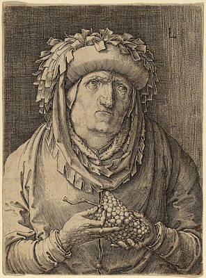 Grapes Drawing - Lucas Van Leyden Netherlandish, 1489-1494 - 1533 by Quint Lox