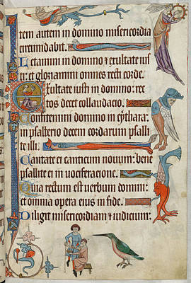 Practitioner Photograph - Luttrell Psalter by British Library