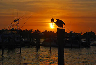 Photograph - 23 - Sunset Sailfish Marina by Joseph Keane