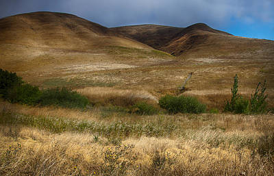 2312hdr - Napa Valley Original by Deidre Elzer-Lento