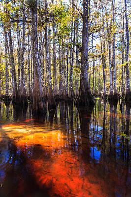 Outdoor Photograph - Fisheating Creek by Jonathan Gewirtz