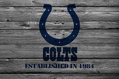 Indianapolis Photograph - Indianapolis Colts by Joe Hamilton