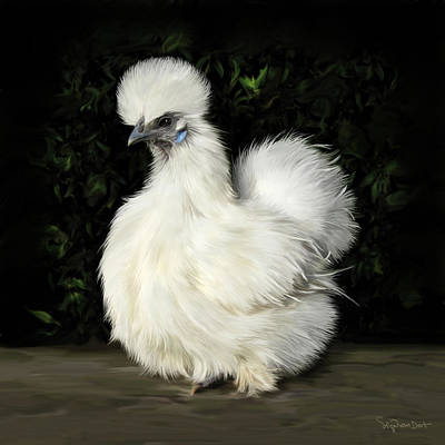 24. Tiny White Silkie Art Print