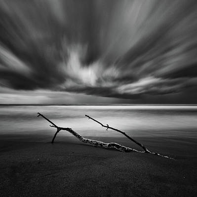 Driftwood Beach Photograph - Untitled by Massimo Della Latta