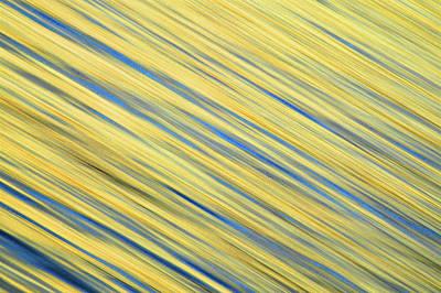 La Jolla Art Photograph - Usa, California, La Jolla by Jaynes Gallery