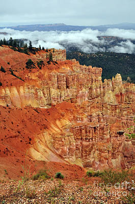Photograph - 249p Bryce Canyon by NightVisions