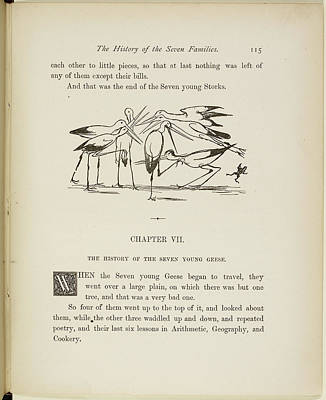 Stork Photograph - A Book Of Nonsense By Lear by British Library