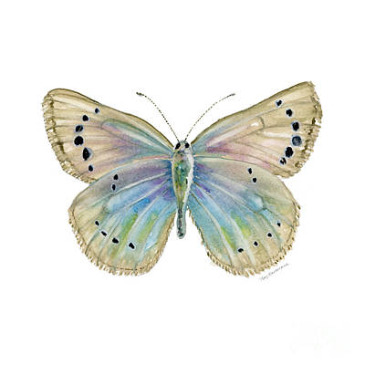 Animals Paintings - 25 Alexis Butterfly by Amy Kirkpatrick