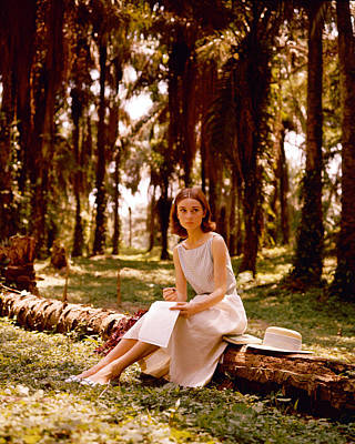 Actor Photograph - Audrey Hepburn by Silver Screen