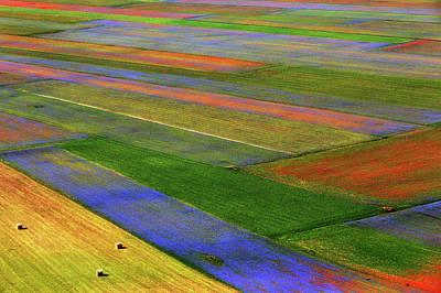 Plantation Photograph - Untitled by Massimo Della Latta