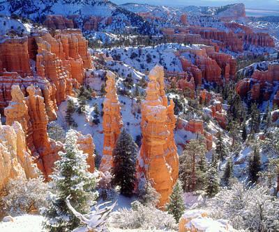 Usa, Utah, Bryce Canyon National Park Print by Jaynes Gallery